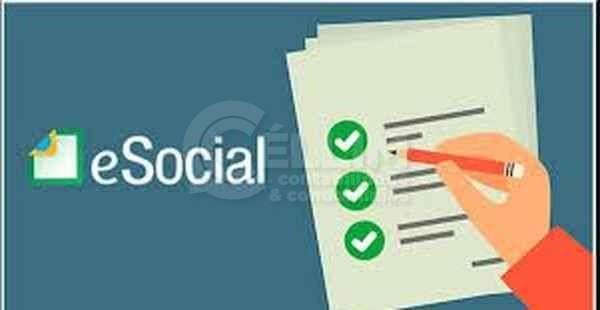 Fases do eSocial e a busca das empresas pela adequação ao novo modelo