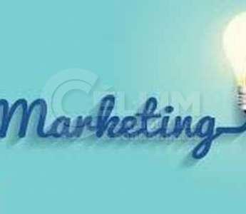 A importância do marketing e das redes sociais para o contador